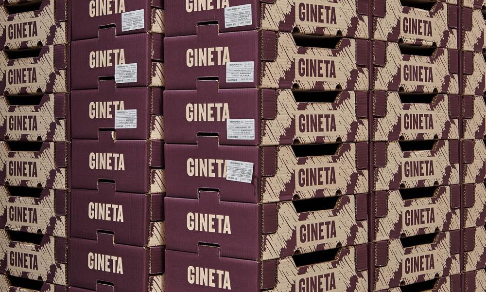 gineta-nueve-estudio-almacen-1-1920x1280