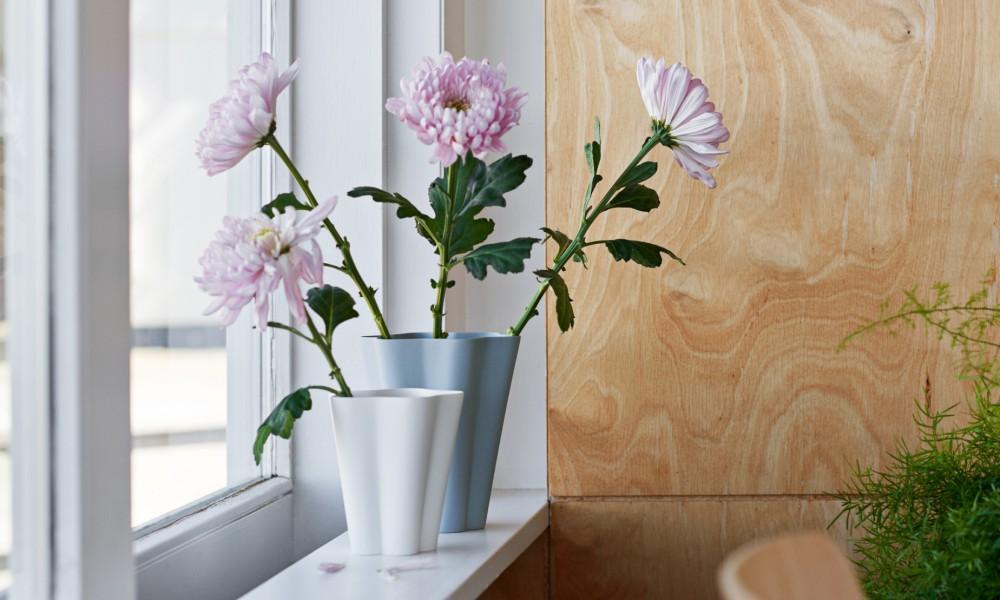 Hay Iris design 5
